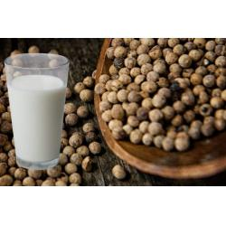 Konopljino-mleko